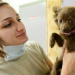 Thumbnail for National Veterinary Technician Week